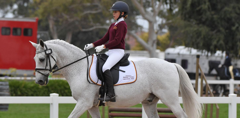d2ed65de69a Welcome to the Horseware Australia Victorian Equestrian Interschool  Championships
